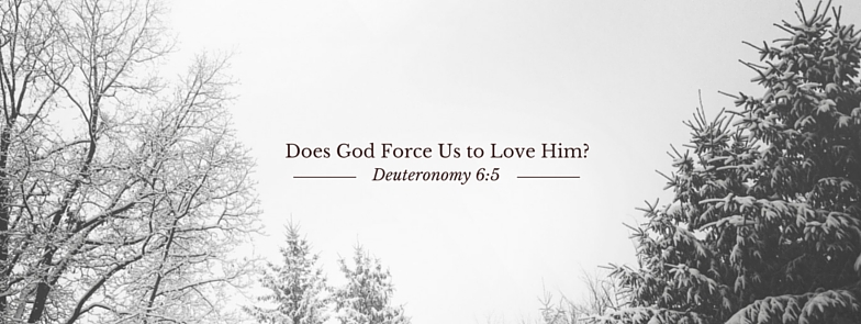 Does God Force Us to Love Him_ pic