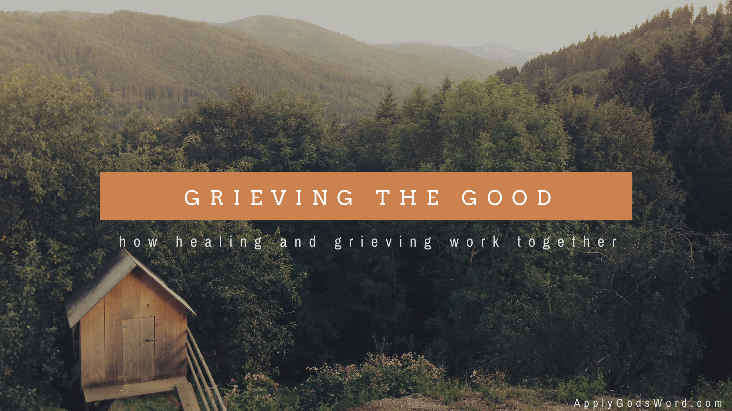 Grieving to Healing Bible