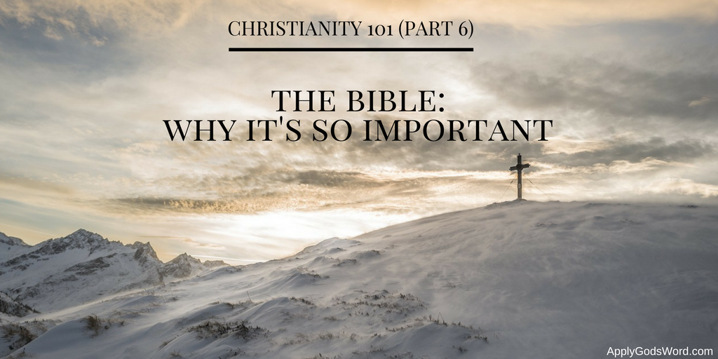Why is the Bible so important