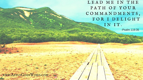 Lead me in the path of your commandments,
