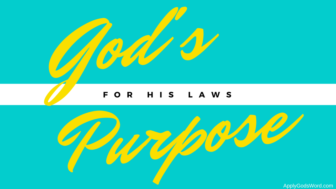 God's law purpose