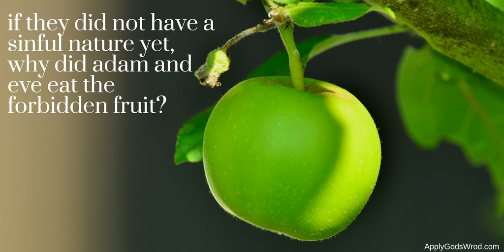 why did adam and eve sin if they did not have a sinful nature